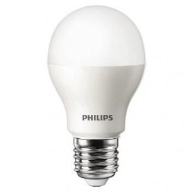 LED 12W Bulbs (Screw)